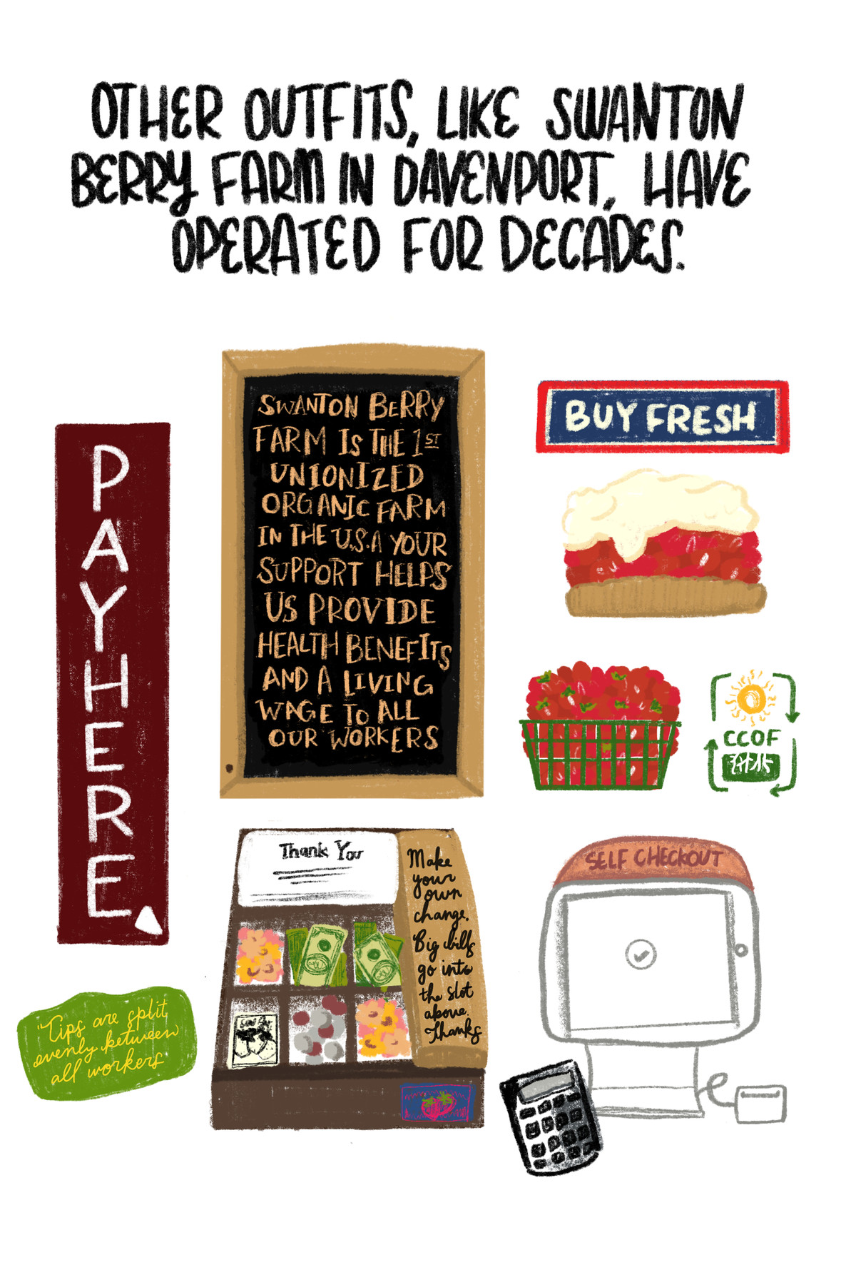 """""""Other outfits, like Swanton Berry Farm in Davenport, have operated for decades."""" [Below the quote is a sign that reads """"Swanton Berry Farm is the first unionized organic farm in the U.S.A. Your support helps us provide health benefits and a living wage to all our workers."""" Below it is an illustration of a cash box, boxes of berries, a calculator, and a sign announcing that """"tips are split evenly between all workers.""""]"""