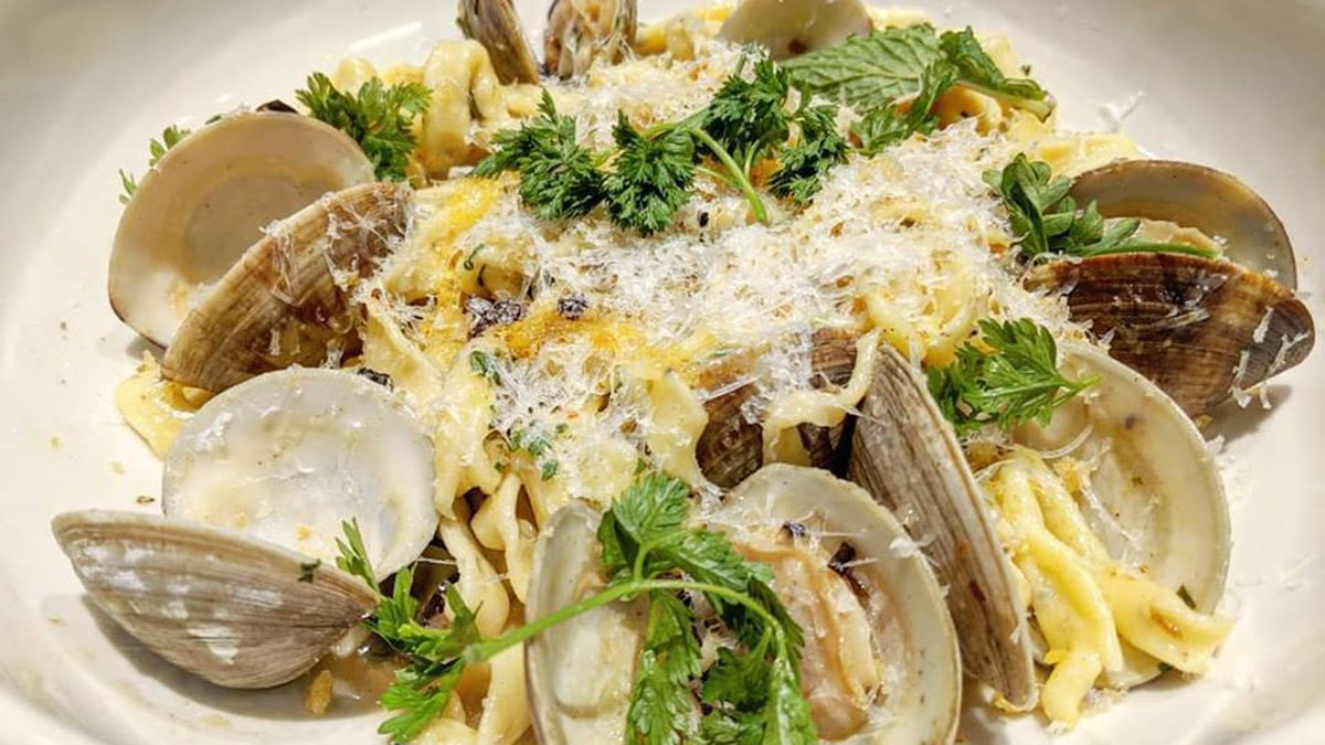 Tagliatelle on a white plate with clams, cheese, and herbs
