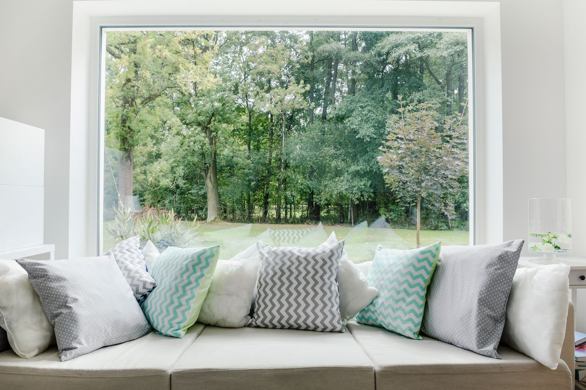 View of trees from window sitting area.