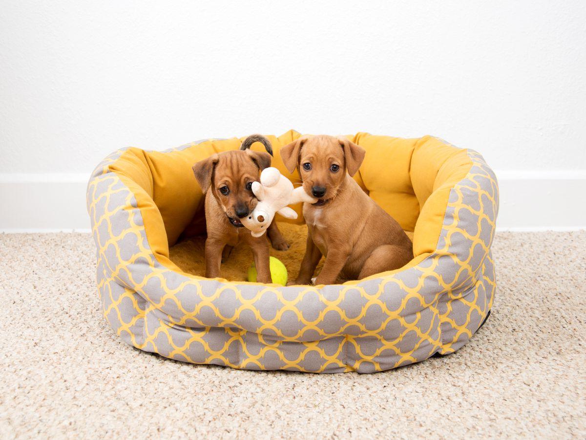"Image via <a href=""http://www.shutterstock.com/index-in.mhtml"">Shutterstock</a>"