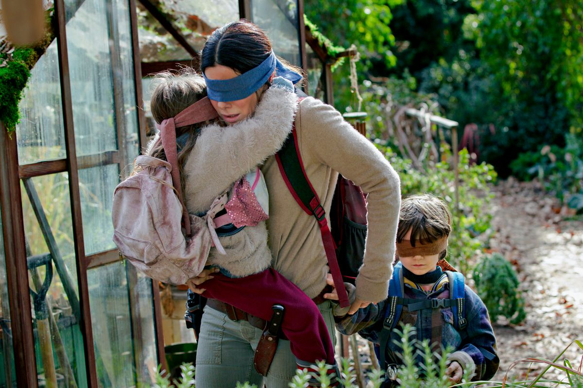 Image result for Netflix Bird Box