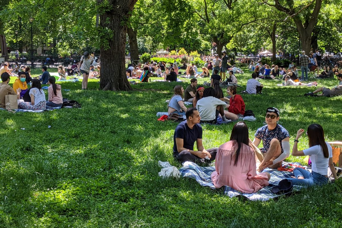 Several groups seen picnicking on a grassy lawn under trees dappled with sunlight.