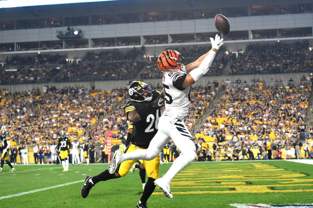 Cincinnati Bengals wide receiver Tyler Eifert cannot catch a pass in the end zone as Pittsburgh Steelers linebacker Mark Barron applies coverage during the first quarter at Heinz Field.