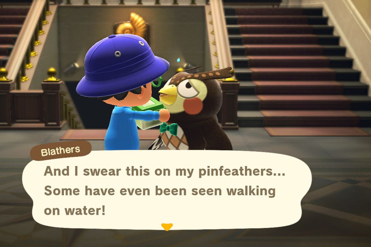 Blathers talks about bugs in Animal Crossing: New Horizons