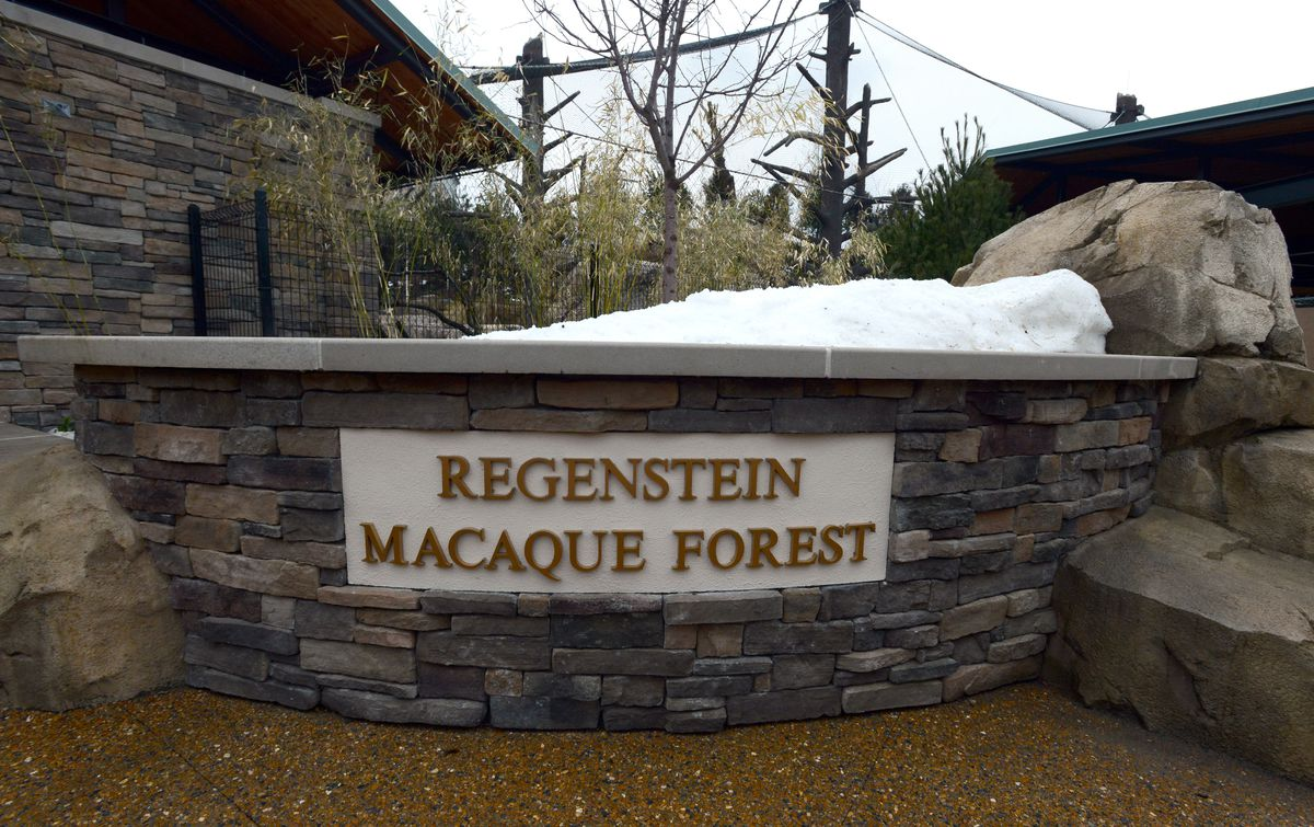 <small><strong> The Regenstein Macaque Forest was part of $16 million in upgrades at the Lincoln Park Zoo. It partially opened on Wednesday.   Photos by Brian Jackson/Sun-Times</strong></small>