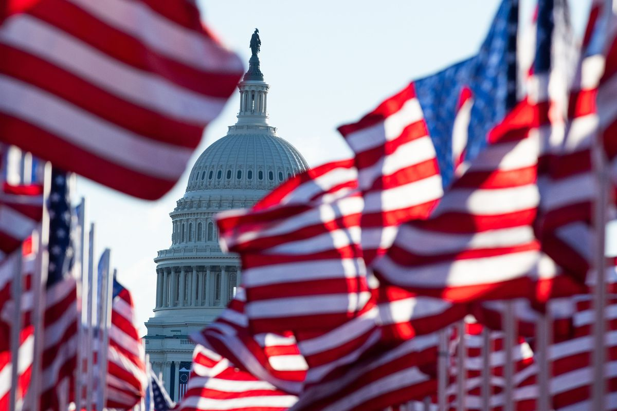 U.S. flags, representing those who could not attend the inauguration due to Covid-19, flutter in the wind at the National Mall on Inauguration Day, January 20, 2021.