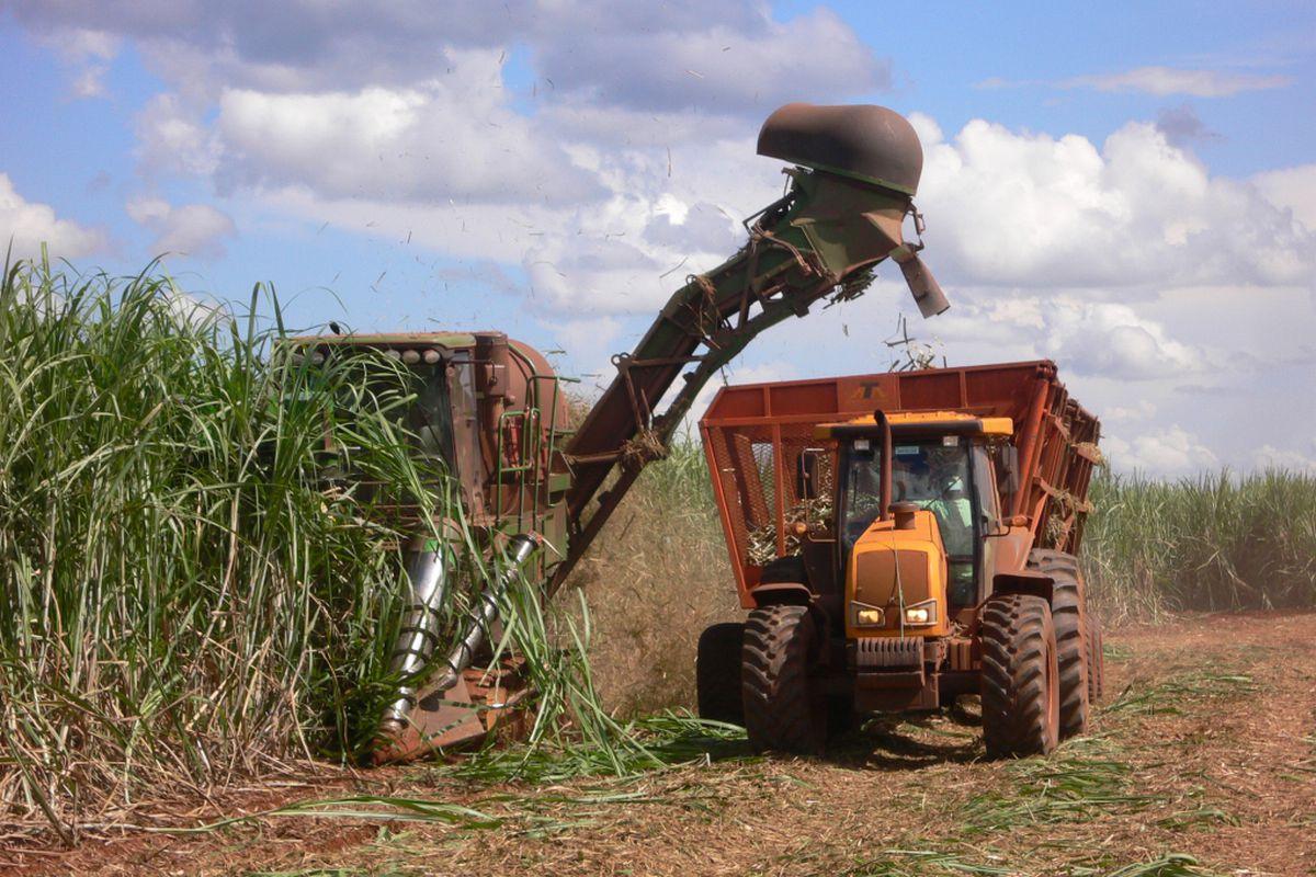 addax biofuels sugarcane