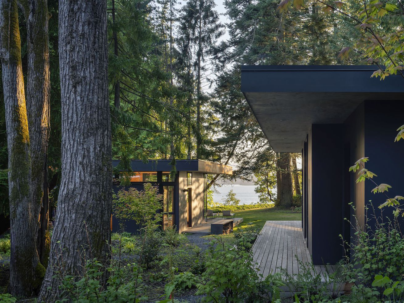 Modern cabins create dreamy family getaway in the woods