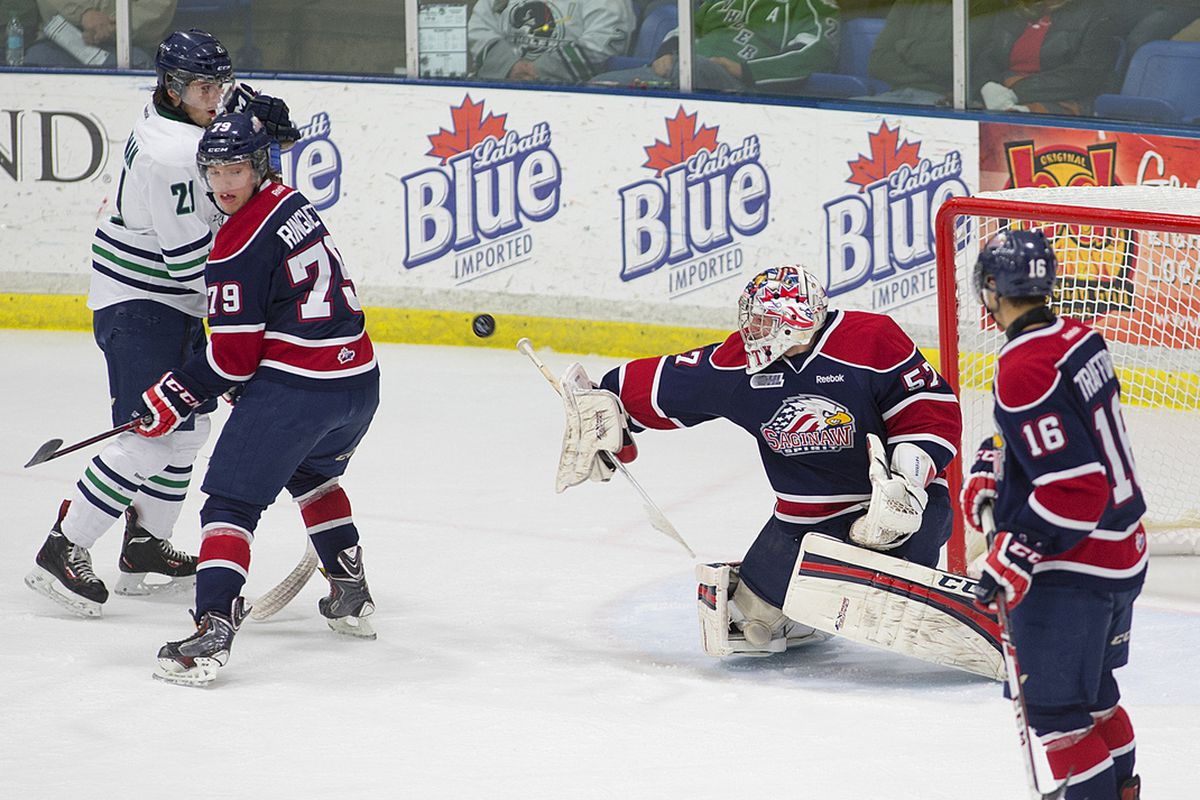 Detroit Red Wings goaltender prospect Jake Paterson