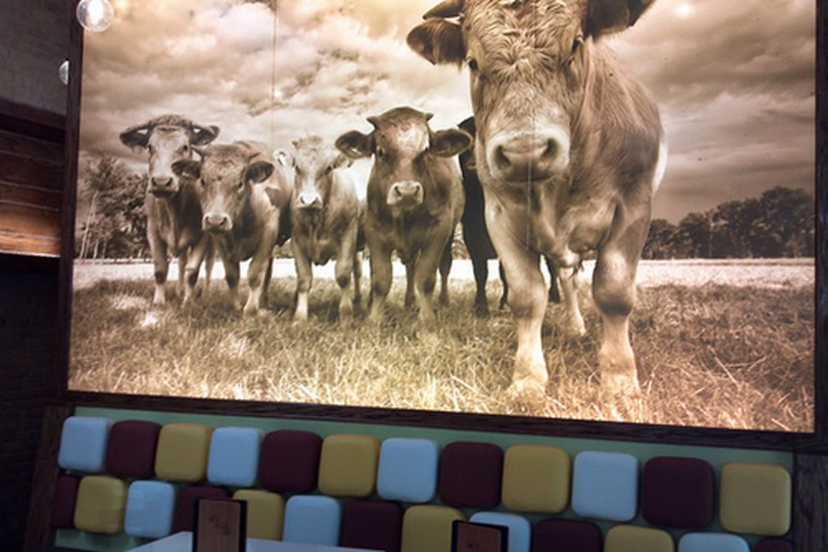 Stackb Burger, Austin, TX
