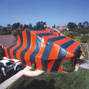 <p>A house is swaddled in fabric before being filled with toxic gas. Fumigation works against drywood termites and the satellite nests of Formosan termites.</p>