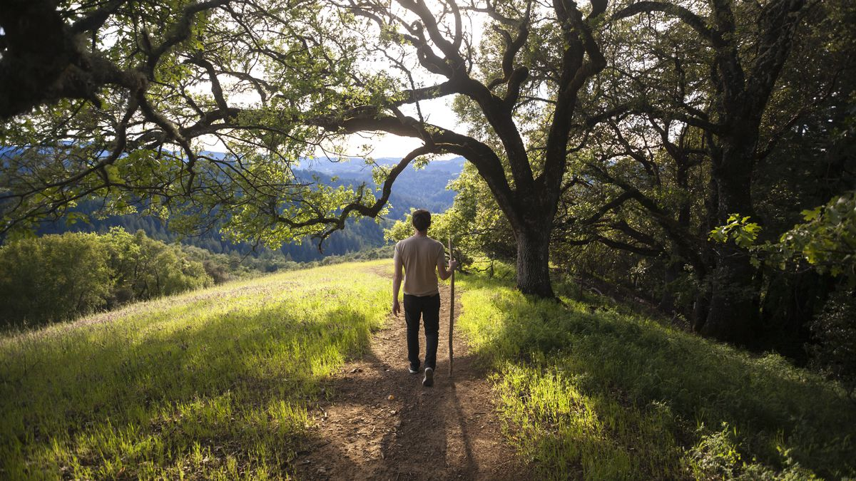 The most scenic wine country hikes in Napa and Sonoma