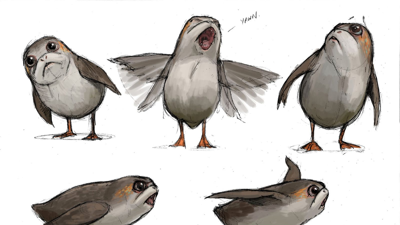 Star Wars The Last Jedi S Lovable Porgs Are Fans Newest