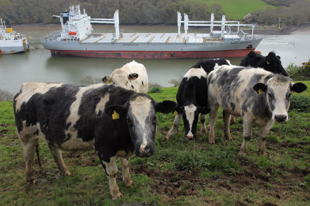 Commercial Ships Lay Idle In Cornish Estuary Due To Global Recession