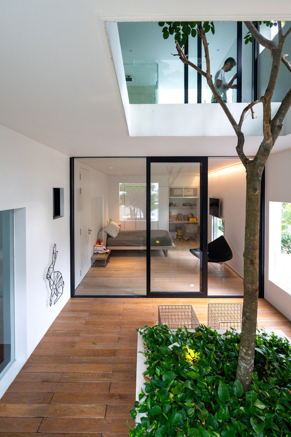 Living area with interior tree and glass wall.
