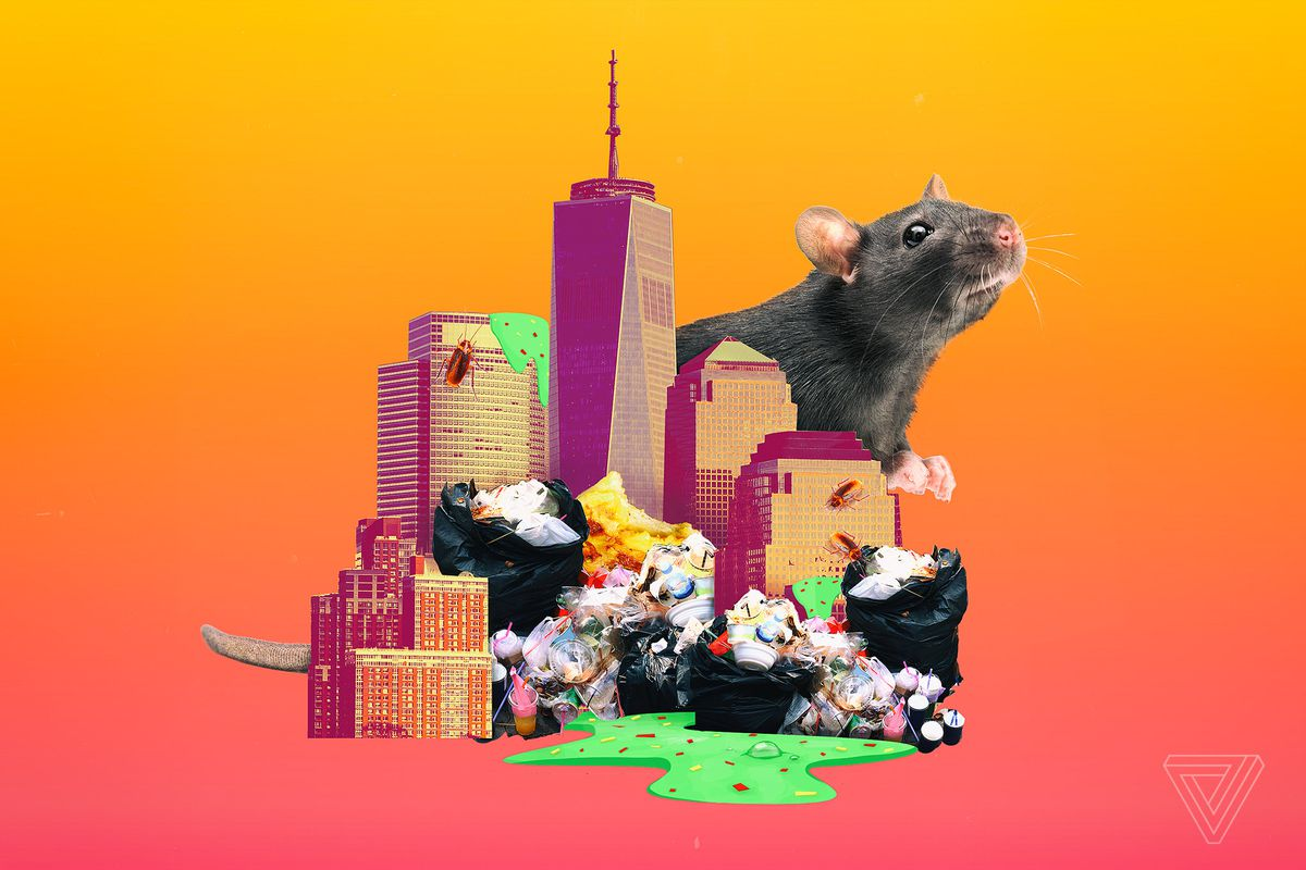 Puke, poop, and sweat: a ranking of New York City's grossest