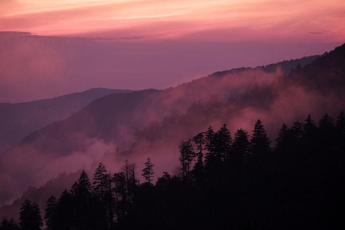 GREAT SMOKY MOUNTAINS NATIONAL PARK, TN,- JULY 23: Fog settles