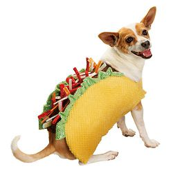 """<strong>Petco</strong> Taco Dog Costume, <a href=""""http://www.petco.com/product/125539/Petco-Halloween-Taco-Dog-Costume.aspx"""">$24.99</a> at Petco"""