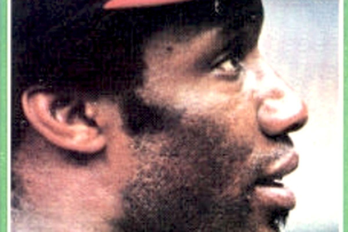 Bobby in Profile