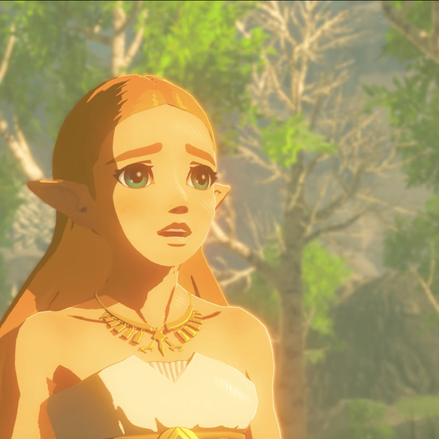 Breath of the Wild update addresses one of players' biggest