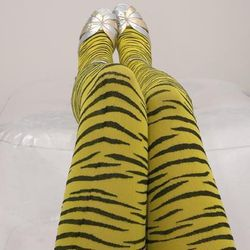 "We Love Colours Zebra Tights, <a href=""http://www.welovecolors.com/Shop/ZebraTights.htm"">$14</a>"