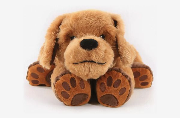 A product shot of Theo the Therapy Dog