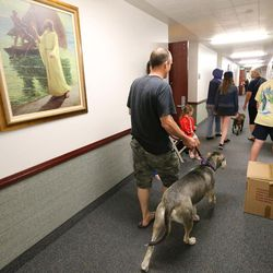 Evacuees and their dog walk through an LDS Church stake center during Tropical Storm Harvey in Houston on Tuesday, Aug. 29, 2017.