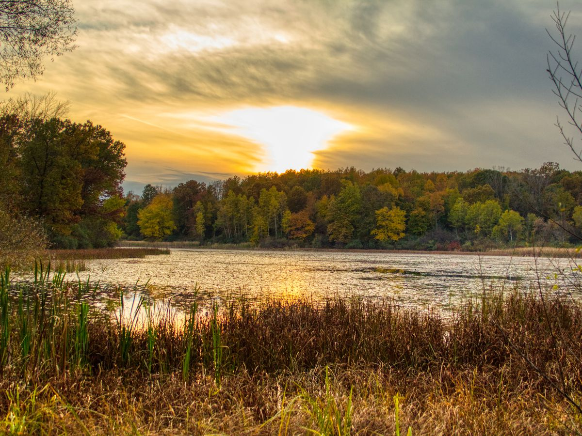 The best hiking trails in Metro Detroit, mapped - Curbed Detroit