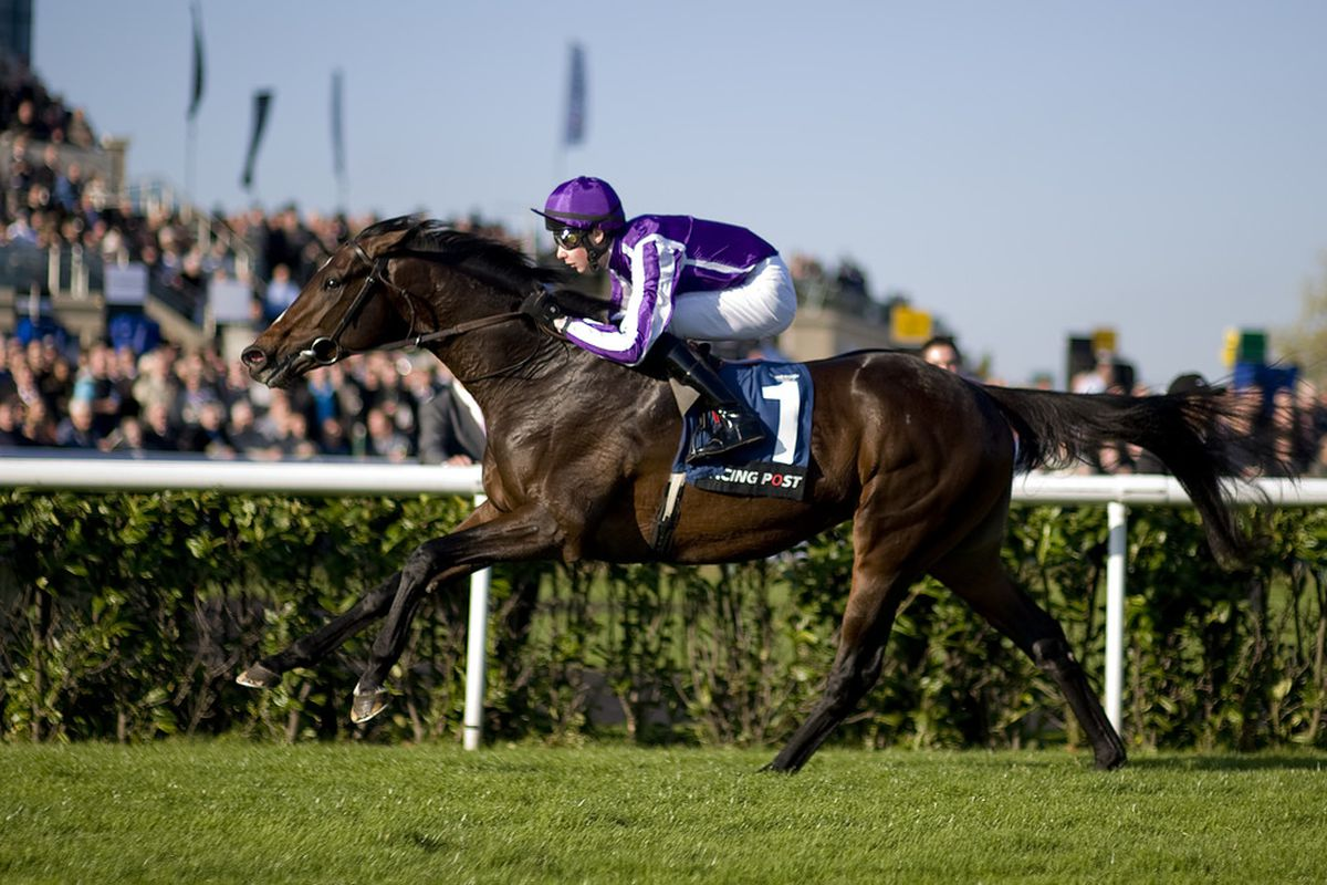 DONCASTER, ENGLAND - OCTOBER 22:  Joseph O'Brien riding Camelot win The Racing Post Trophy at Doncaster racecourse on October 22, 2011 in Doncaster, England. (Photo by Alan Crowhurst/Getty Images)