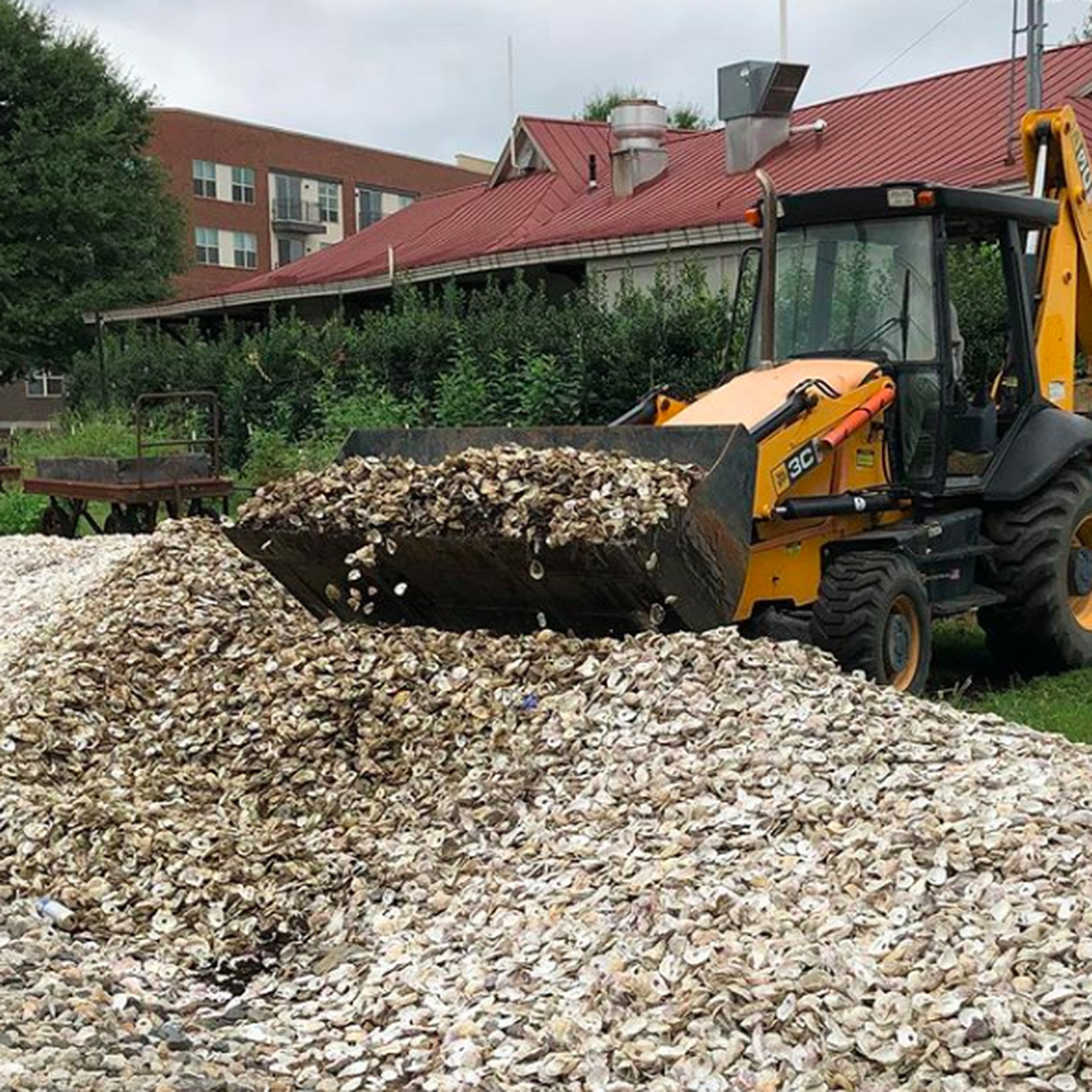 Kimball House Donates One Million Oyster Shells For Georgia Reef