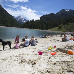 People mingle and play on the beach on a sunny day at Tibble Fork Reservoir on Thursday, June 15, 2017.