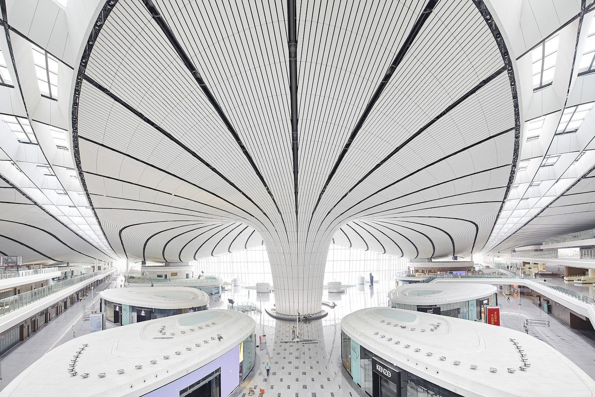 Check in area of airport featuring pod-shaped kiosks and curving ceiling.