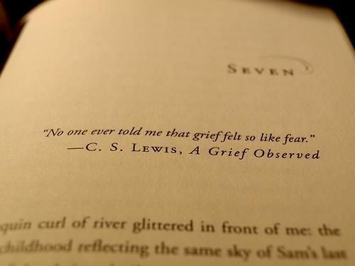 """No one ever told me that grief felt so like fear."" — C.S. Lewis"