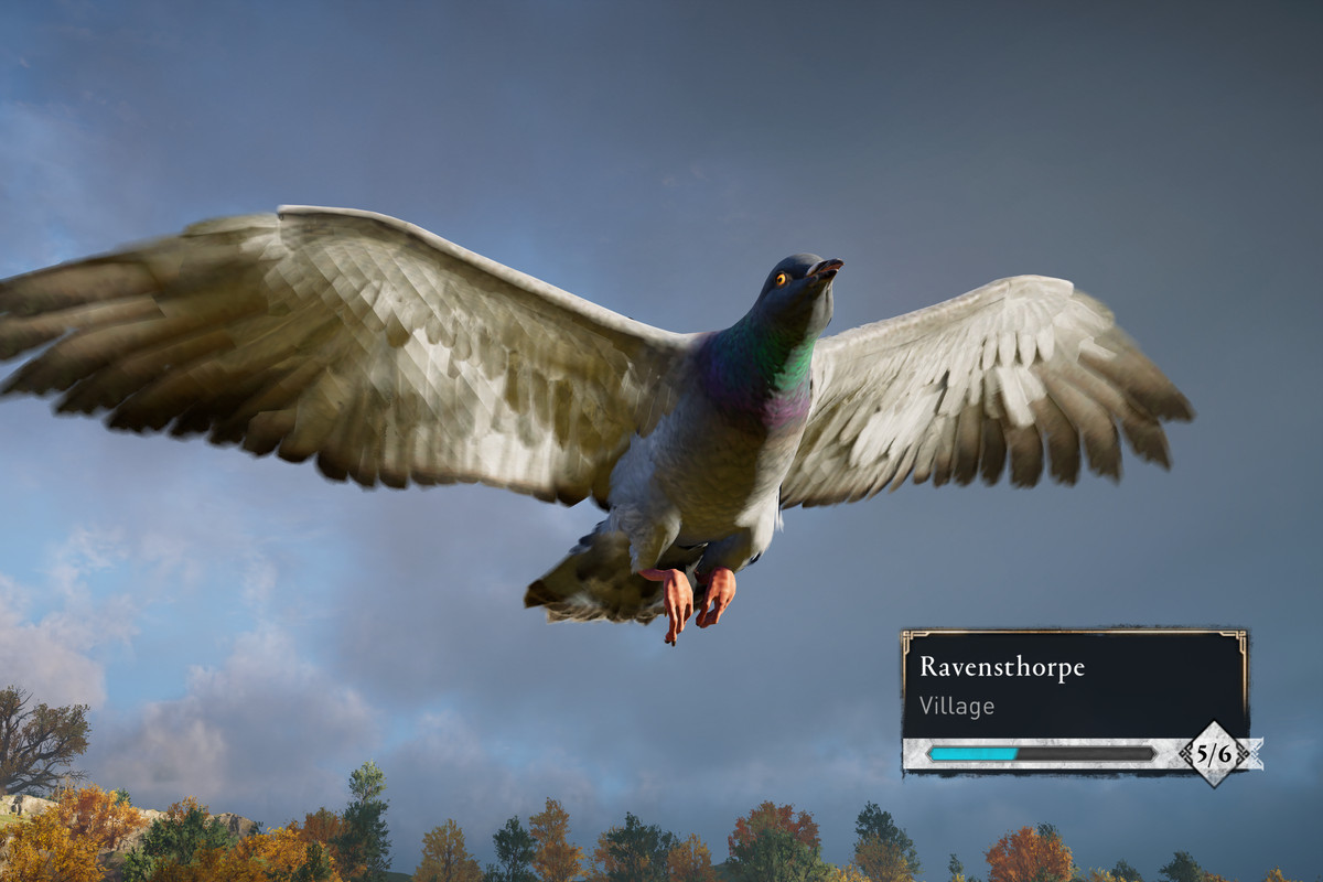 A pigeon with very large wings