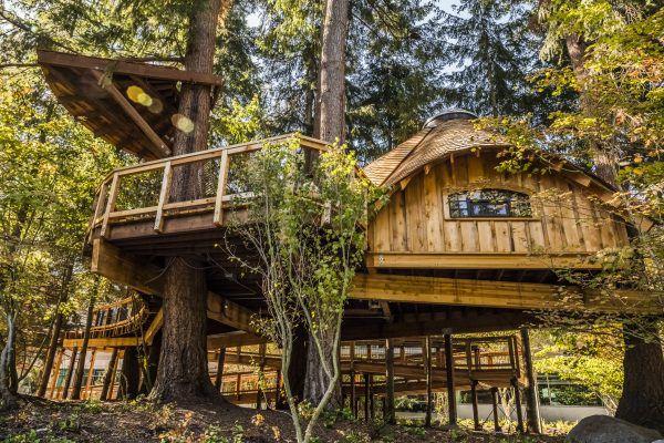 Microsoft dựng nhà cây cho nhân viên nghỉ ngơi hoặc có không gian mới để tìm ý tưởng - Ảnh 2.