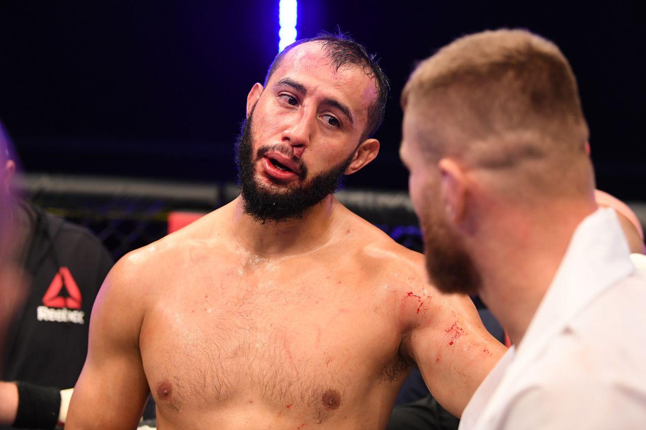 UFC 253 Reyes v Blachowicz