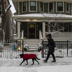 A woman walks her dog along the sidewalk on West Glenlake Avenue in Edgewater as a winter snow storm batters Chicago, Tuesday morning, Jan. 26, 2021.