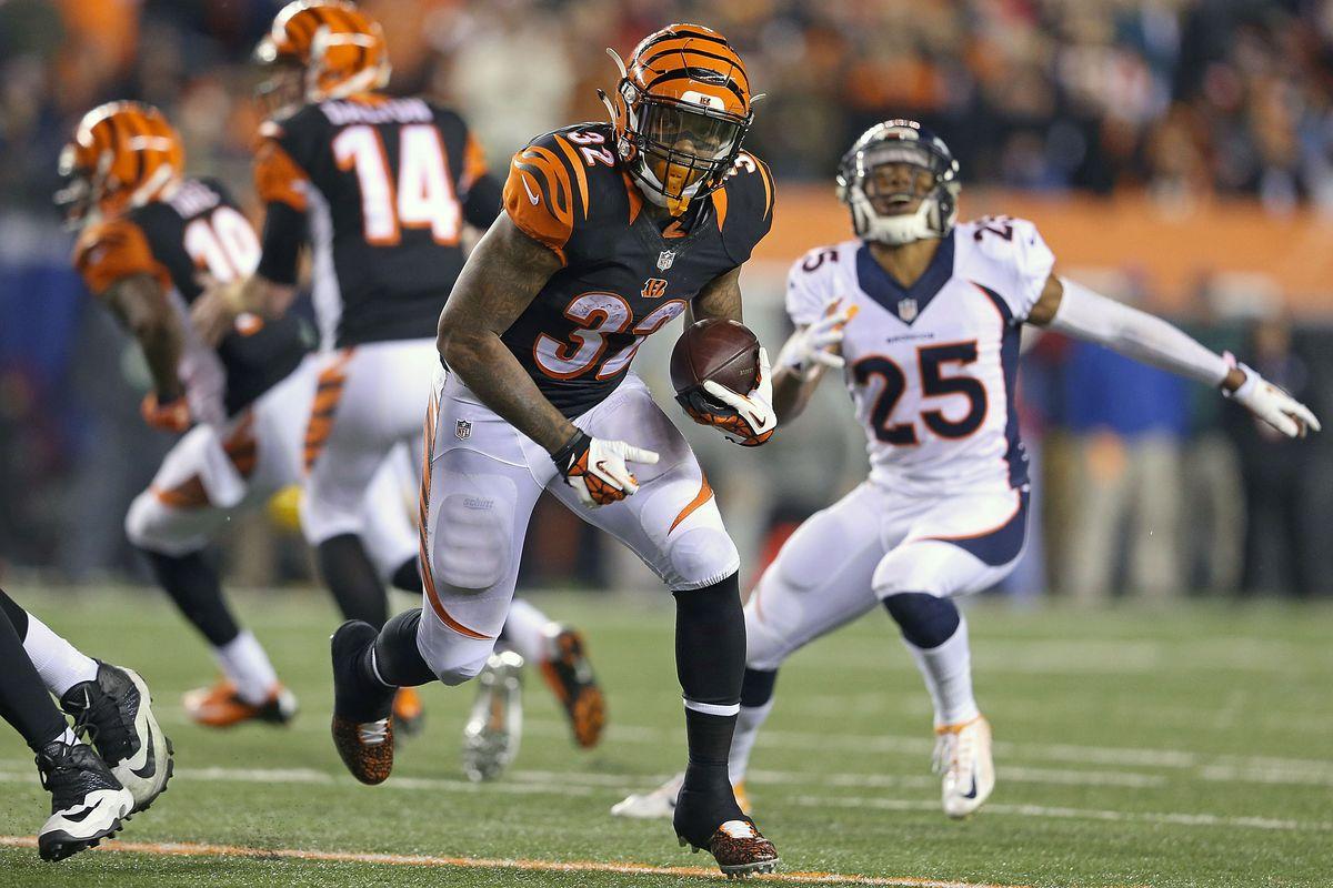 Denver Broncos v Cincinnati Bengals