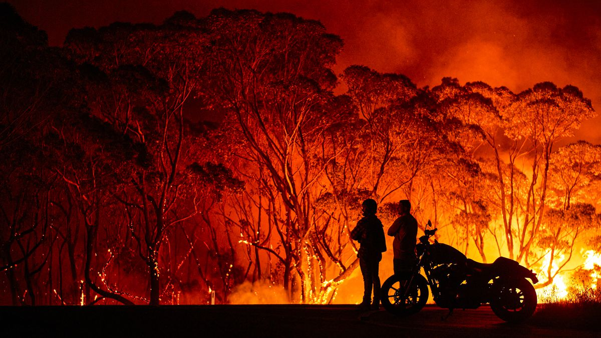 Australia fires: 8 things everyone should know about the bushfire ...