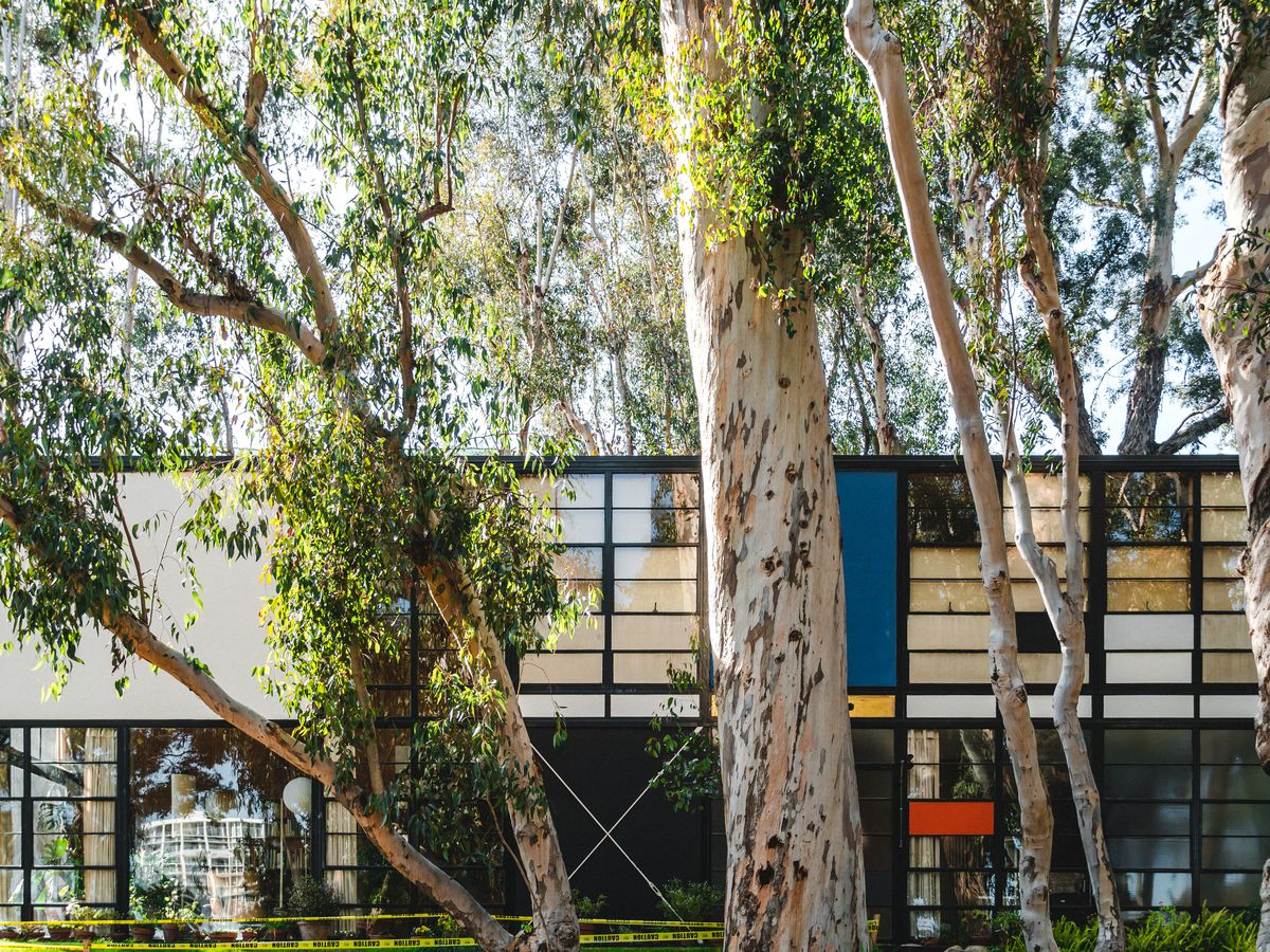 The Eames house with blue, red, and yellow panels on the exterior. There is a large tree outside of the house.