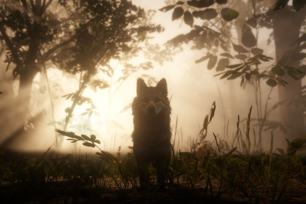 Red Dead Redemption 2guide to Legendary Animals
