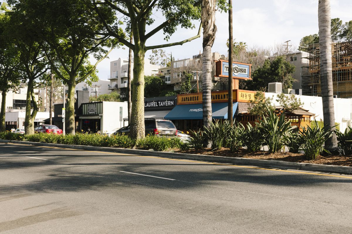 A street view of a commercial district lined with low-slug shops and restaurants. Signs for businesses include Laurel Tavern and Japanese Restaurant. A center median is populated with mature trees and shrubs.