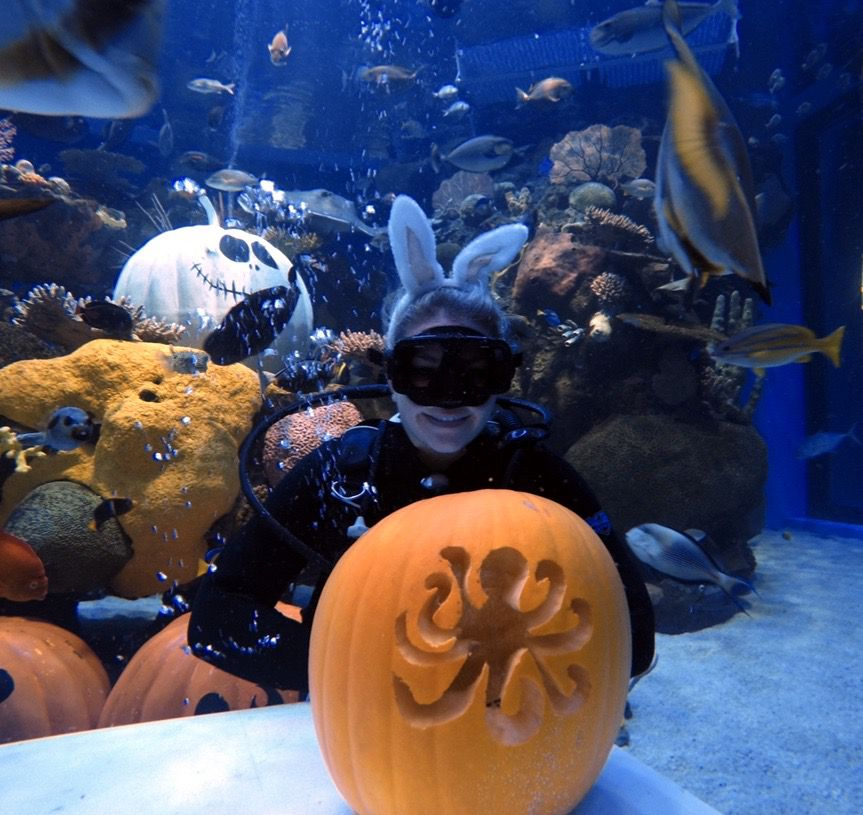 A SCUBA diver with carved pumpkins around her