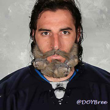 muskrat beard