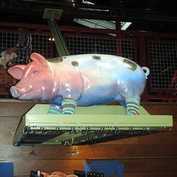 Alex, the pig over the bar at Alla Spina.
