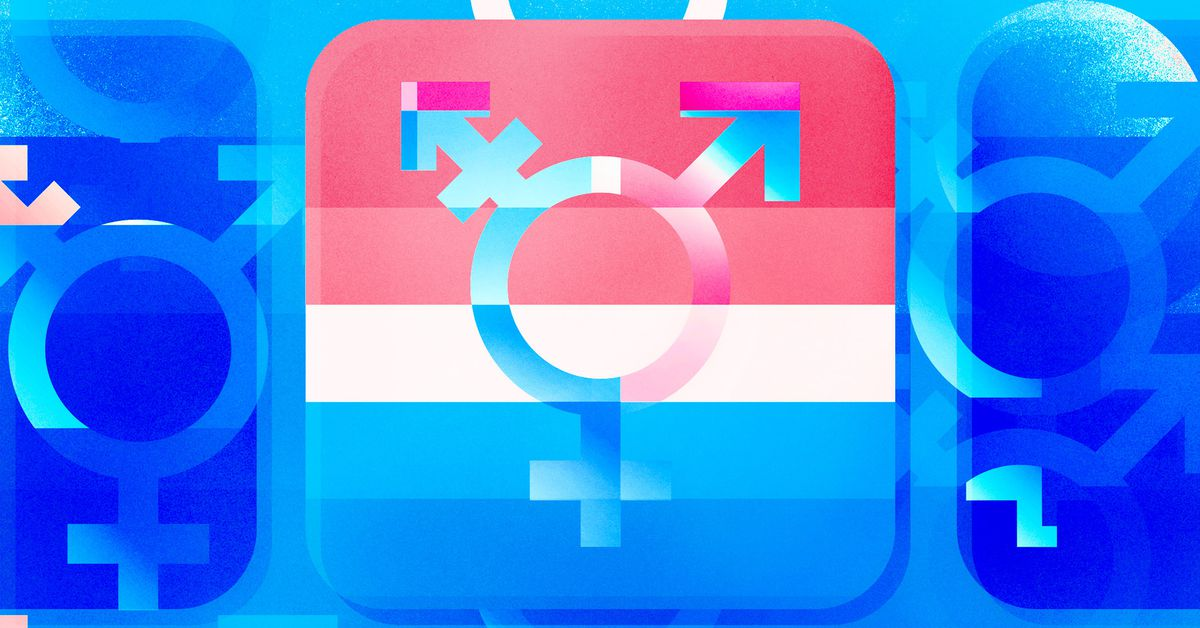 Imperfect offerings: inside the complex new world of trans tech