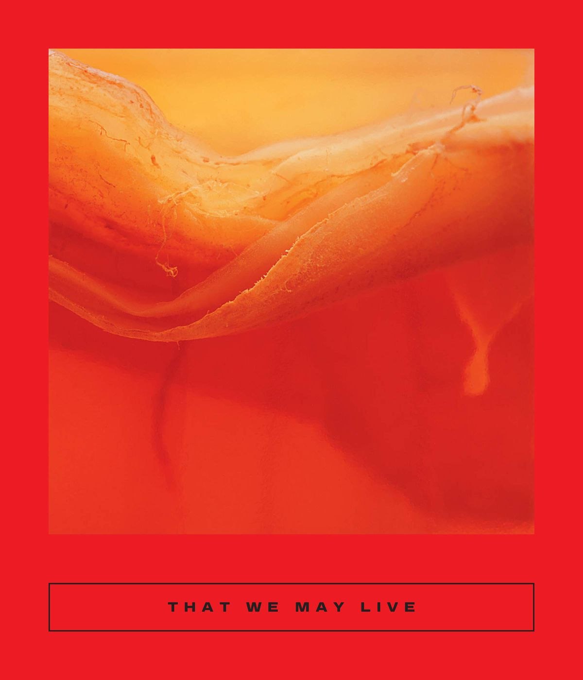 a sun abstraction on That We May Live: Speculative Chinese Fiction, translated by Jeremy Tiang & Natascha Bruce