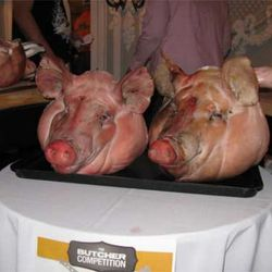 Those are some happy pig heads