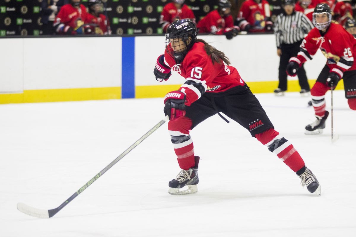 Roster Recap: 14 weeks of NWHL signings - The Ice Garden