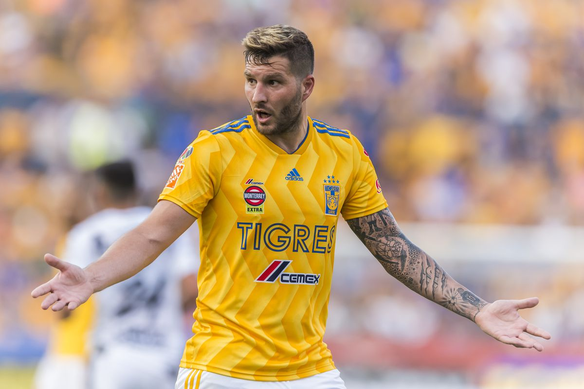 what s wrong with tigres fmf state of mind